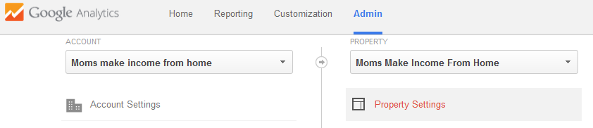 Property Settings in Google Analytics